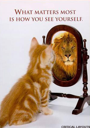 cat_sees_lion_in_mirror